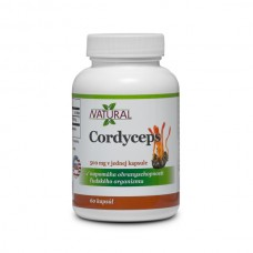 Cordyceps 500 mg - 60 capsules