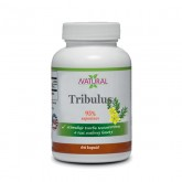 Tribulus Terrestris - 450 mg - 60 kapsúl